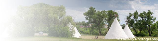 Tipis in a field
